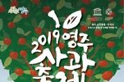 빨간 영주사과와 노란 은행잎의 시선 쟁탈전, '2019영주사과축제' 26일 개막